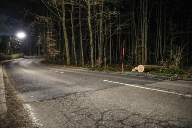 55-Jähriger bei Forstarbeiten in Gmunden tödlich verletzt   Foto: laumat.at/Matthias Lauber