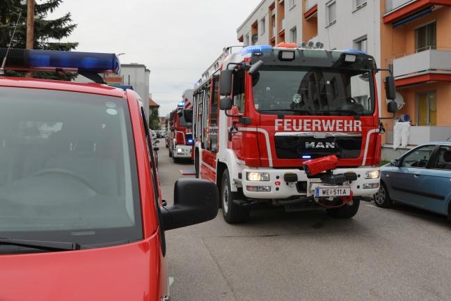 Brand eines Mistkübels in einer Küche eines Mehrparteienwohnhauses in Wels-Neustadt | Foto: laumat.at/Matthias Lauber