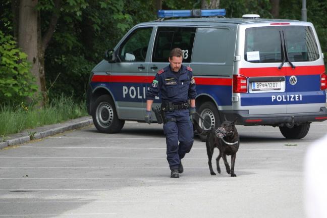 Einsatz bei Suche nach Person in der Traun | Foto: laumat.at/Matthias Lauber