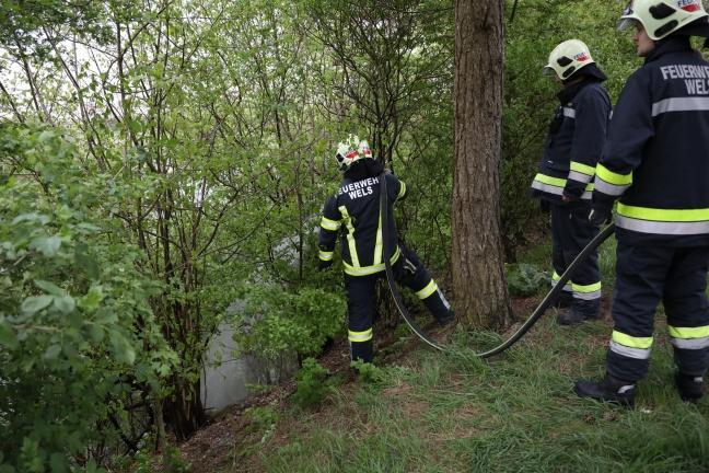 Feuerwehr bei Flurbrand in Wels-Vogelweide im Einsatz | Foto: laumat.at/Matthias Lauber