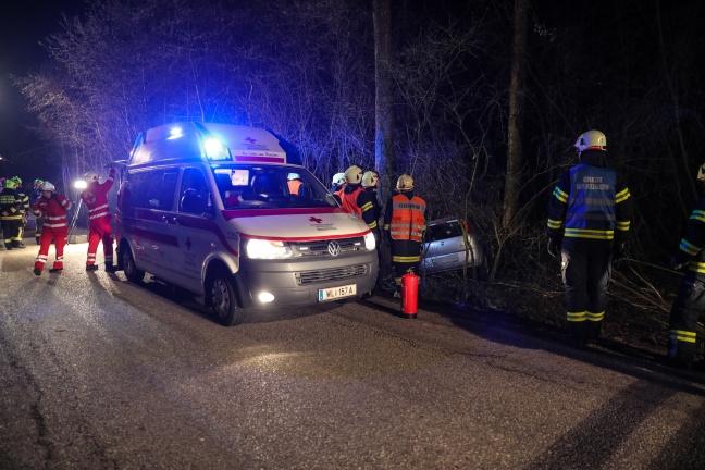 Autolenker nach Verkehrsunfall in einem Waldstück in Holzhausen zwischen Bäumen eingeschlossen | Foto: laumat.at/Matthias Lauber
