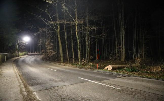 55-Jähriger bei Forstarbeiten in Gmunden tödlich verletzt