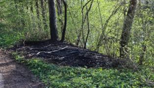 Kleiner Wald- beziehungsweise Böschungsbrand in Wels-Puchberg