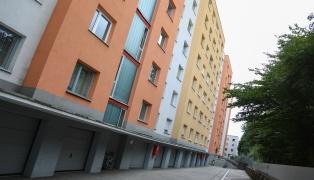 Größerer Einsatz der Polizei nach Streit in Wels-Neustadt