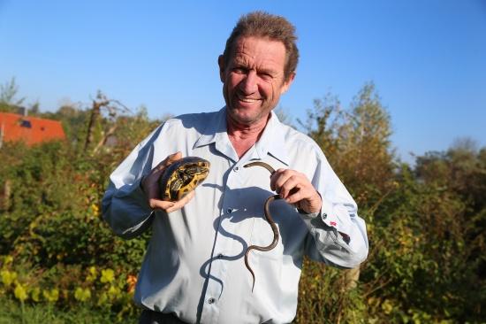 Reptilienexperte rettete Schlingnatter und exotische Schmuckschildkr�te   Fotograf: Matthias Lauber