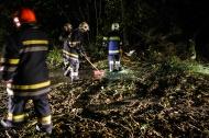 """Sturmtief """"Gonzalo"""" sorgt f�r zahlreiche Feuerwehreins�tze in Ober�sterreich   Fotograf: Matthias Lauber"""
