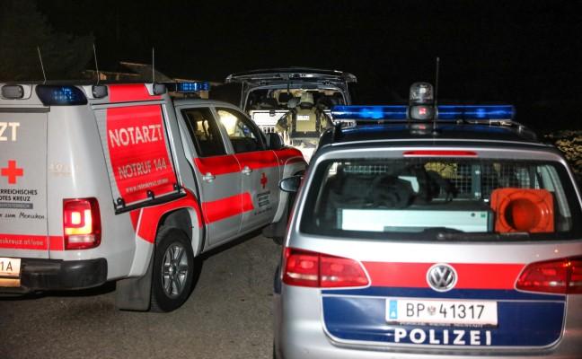 Nächtlicher Cobra-Einsatz in Hofkirchen an der Trattnach endet mit Festnahme