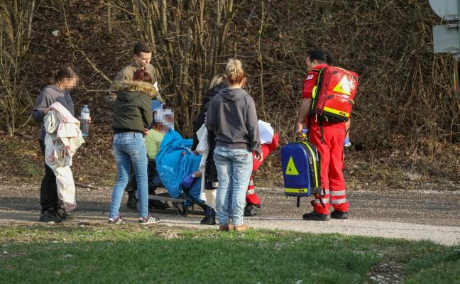 Schwere Hundebissverletzung bei Spaziergang mit Hund in Wels-Schafwiesen