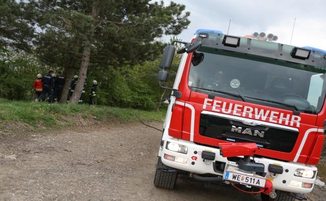 Feuerwehr bei Flurbrand in Wels-Vogelweide im Einsatz