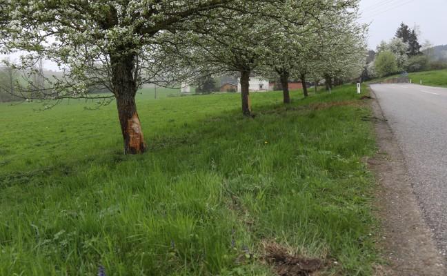 Autolenkerin kracht bei Unfall in Pichl bei Wels gegen Obstbäume