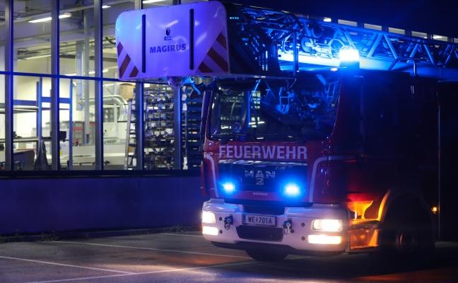 Brand in Produktionshalle in Wels-Waidhausen vor Eintreffen der Feuerwehr gelöscht