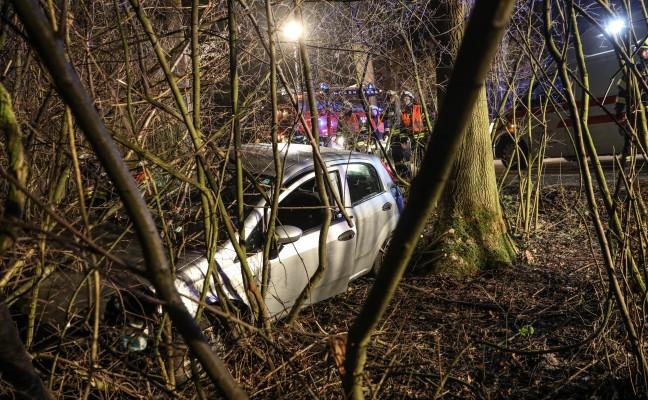 Autolenker nach Verkehrsunfall in einem Waldstück in Holzhausen zwischen Bäumen eingeschlossen