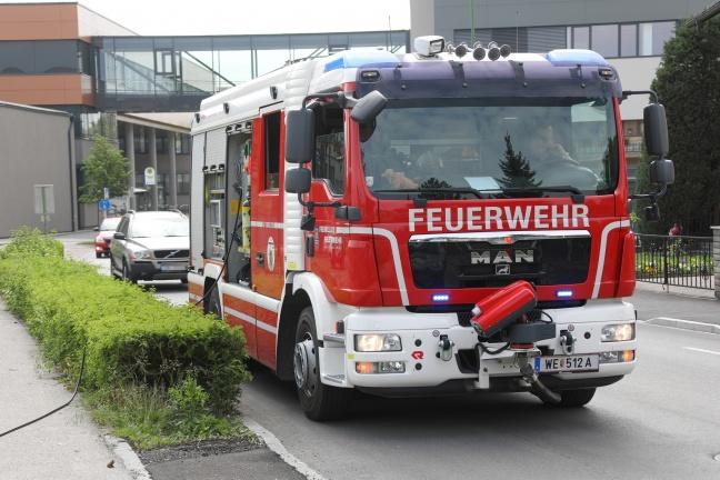 Feuerwehr stemmt auf Parkplatz in Wels-Neustadt in Rohr eingeklemmten Igel frei
