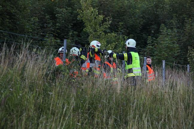 Autoüberschlag auf Westautobahn in Allhaming fordert drei Verletzte