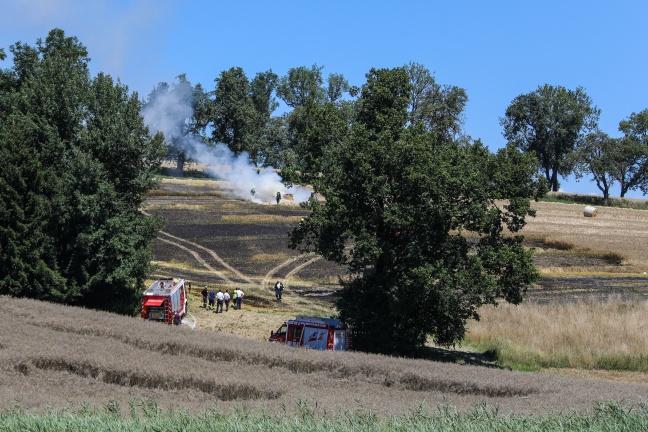 Feuerwehr bei ausgedehntem Brand eines Feldes in Pucking im Einsatz