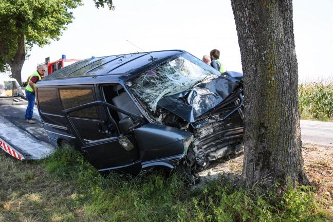 Kleintransporter kracht in Schiedlberg frontal gegen Obstbaum
