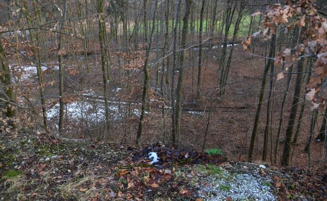 Frau nach Sturz bei Spaziergang in Attnang-Puchheim zum Rettungsfahrzeug gebracht