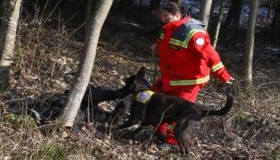 Rettungshunde für Aus- und Weiterbildung auf besonderem Sucheinsatz